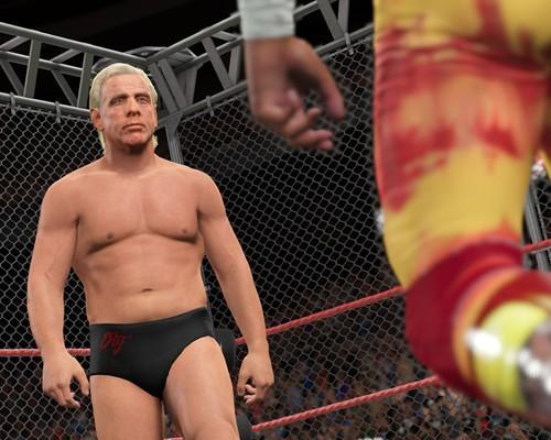 PlayStation®4 版和Xbox One版《WWE® 2K15》現已推出