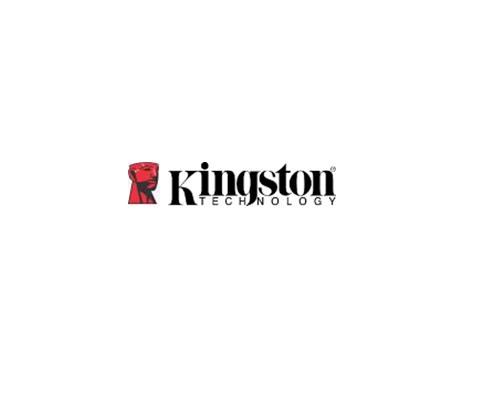 Kingston攜手THE WALL T-Fest明日音樂祭熱血登場