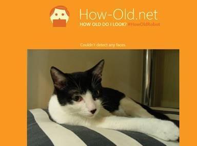 微軟測試年齡網站(How Old Do I Look)爆紅 背後原理大揭密!