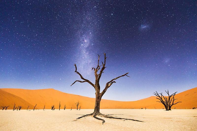 「國家地理旅行者攝影大賽2015」得獎作品出爐!