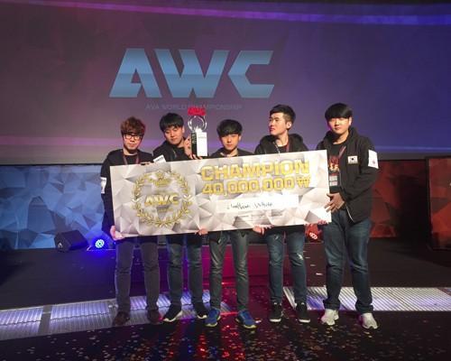 《A.V.A戰地之王》2015 AWC世界盃 韓國完勝奪冠