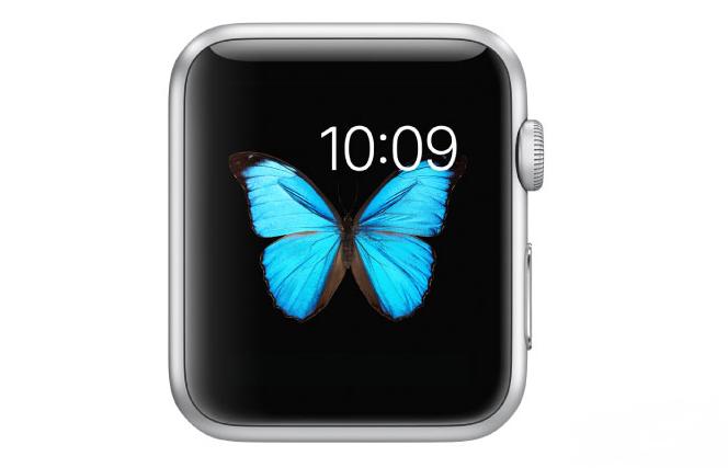 APPLE下一代iPhone要用OLED螢幕