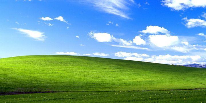 52% 企業用戶死守 Windows XP